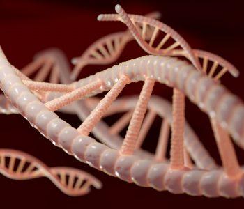 Representación ADN