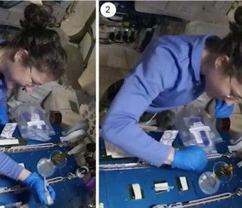 La astronauta Christina Koch usando la edición de genes CRISPR en el espacio.